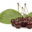 Stockfoto: Red cherries and green leaves.