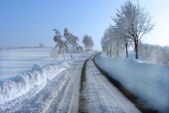 Snowy road. — Stock Photo