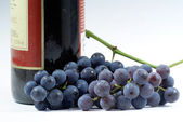 Grapes and the wine bottle. — Stock Photo