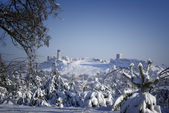 Winter landscape with medieval castle. — Stock Photo