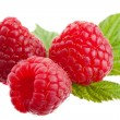 Group of raspberries - Stock Photo