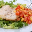 Fish dish — Stock Photo #1717325