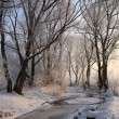 Foto Stock: Frozen river