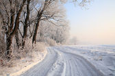 Snöiga fältet blå molnfri himmel — Stockfoto