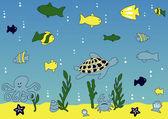 Ocean and sea life vector illustration — Stock Vector
