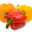 Close-up color paprika with water drops — Stock Photo