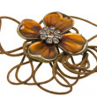 Stock Photo: Vintage brown pendant, coulomb flower