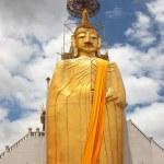Golden standing Buddha — Stock Photo