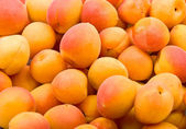 Fresh natural apricot background — Stock Photo