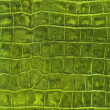 Stock Photo: Green reptile leather imitation texture