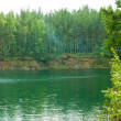 Summer landscape. Ural mountains river — Stock Photo