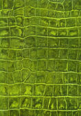 Green reptile leather imitation texture — Stock Photo