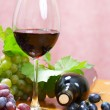 Wine composition — Stock Photo