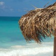Royalty-Free Stock Photo: On a tropical island, travel background