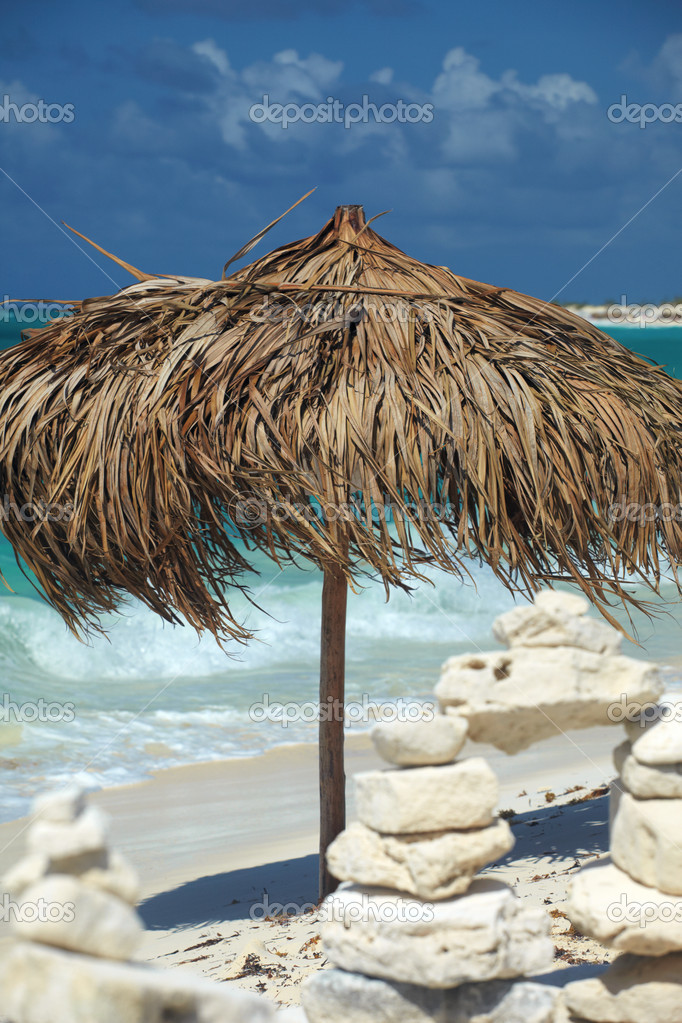 On a tropical island, travel background, cuba  Stock Photo #1656974
