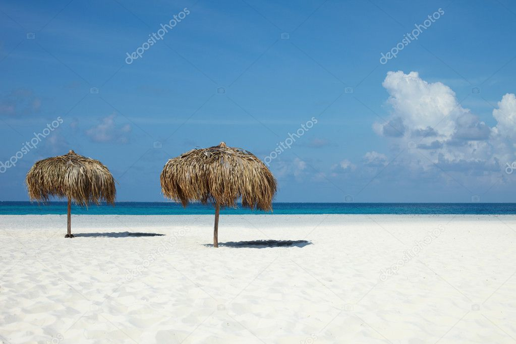 On a tropical island, travel background, cuba  Stock Photo #1659971