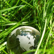 Globe in grass, ecology — Stock Photo #1662898