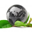 Royalty-Free Stock Photo: The globe concept eco
