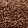 Stock Photo: Coffee grain