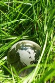 Globe in a grass, ecology — Stock Photo