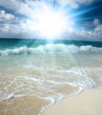The beach and star — Stock Photo