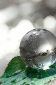 Globe ecology — Stockfoto
