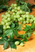 Green grape with leaves — Stock Photo