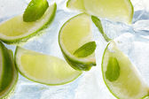 Leaf mint and cut citrus in ice — Stock Photo