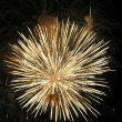 Firework in honor of Independence Day — Stock Photo #1744731