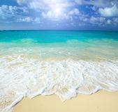 The beach — Stock Photo