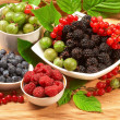 Berries in plates, among green leave - Stock Photo