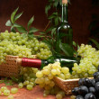 White dry wine, clusters of a grapes — Stock Photo