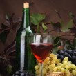 Wine glass with bottle for wine tasting — Stok fotoğraf