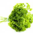 Green parsley — Stock Photo #1685957