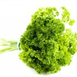 Green parsley - Stock Photo