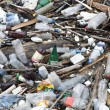 Foto Stock: Garbage in river, pollution