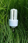 Eco bulb on grass — Stock Photo