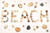 Warm shells beach — Stock Photo