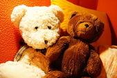 Teddybears — Stock Photo