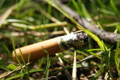 Fag end in grass — Stock Photo