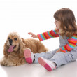 Beauty a little girl and dog — Stock Photo #1698105