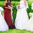 Four brides — Stock Photo