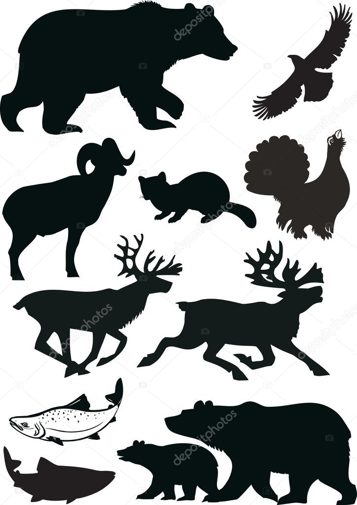 Wild animals silhouette vector illustration — Stock Vector #1800120