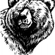 Vector de stock : Grizzly Bear