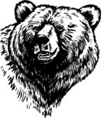 Grizzly Bear — Vector de stock