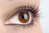 глаз макро — Стоковое фото