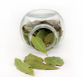 Bay leaf and glass — Stockfoto