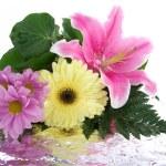 beau bouquet avec réflexion — Photo