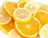 Citrusfrukter — Stockfoto