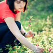 Pretty woman holding spring flowers — Stock Photo #1685875